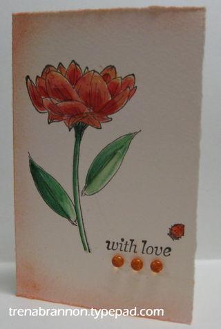 GinaK_yearflowers_TLB