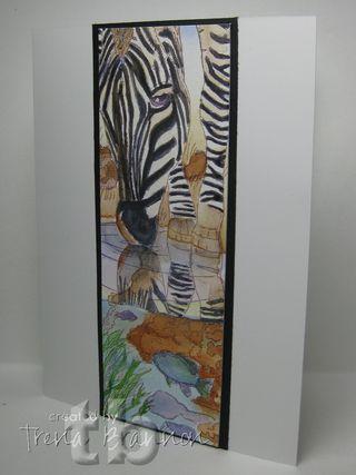 Watercolor-tlb